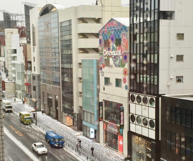 Tokyo sous la neige, vie à Tokyo, visiter tokyo
