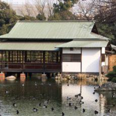 Le jardin de Kiyosumi à Tokyo