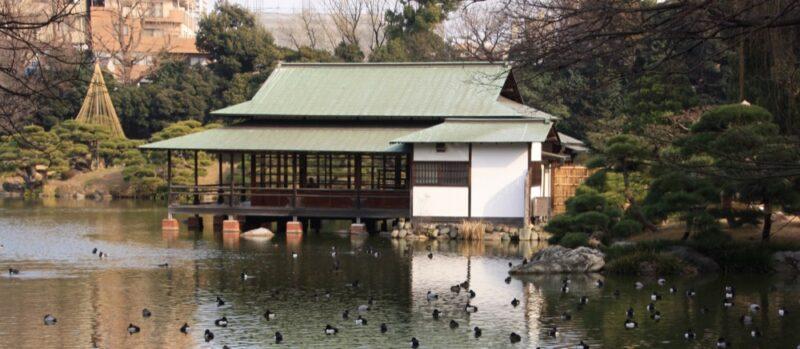 Le jardin de Kiyosumi à Tokyo, vivre à tokyo, visiter tokyo