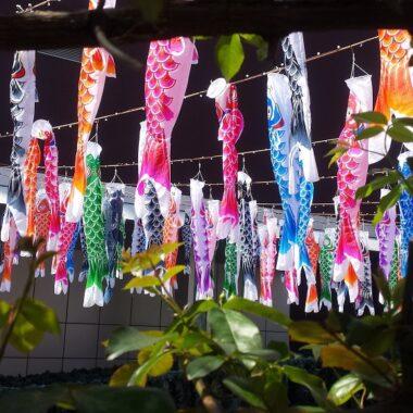 kodomo no hi, fête des enfants, vivre a tokyo, visiter tokyo, culture japonaise, japon, expatriation tokyo