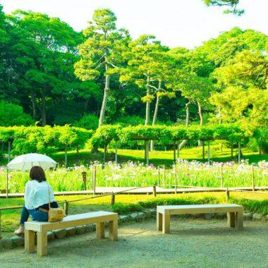 koishikawa-korakuen-tokyo-jardin-des-iris-by-yoshikazu-takada