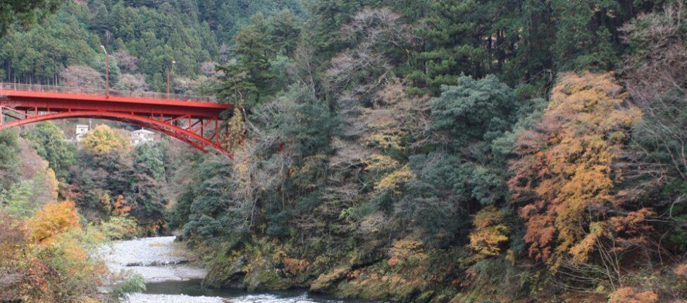 Balade à Okutama depuis Tokyo