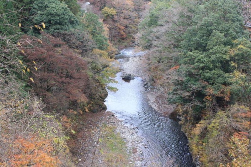La ballade le long de la rivière à Okutama