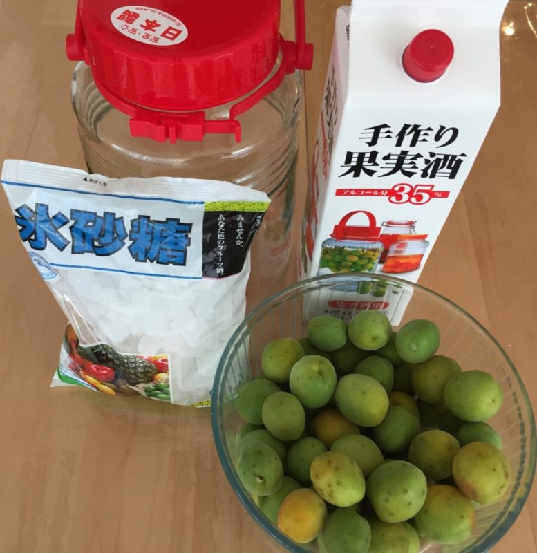 Les ingrédients pour l'Umeshu, vivre à tokyo, expatriation à tokyo