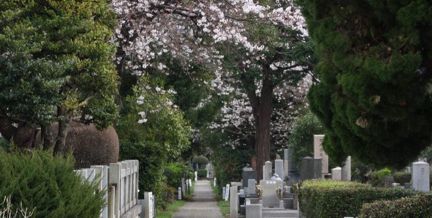 Le cimetière du quartier d'Aoyama à Tokyo
