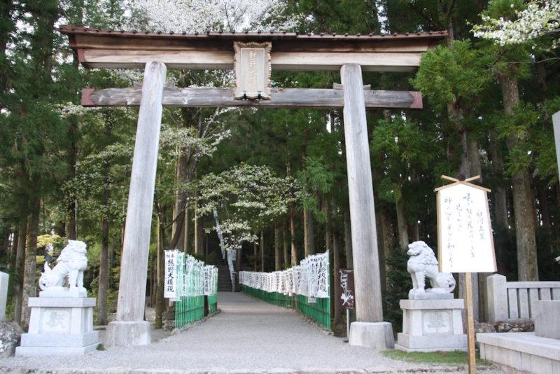 shinto, culture japonaise, visiter le japon, visiter tokyo, sanctuaire shinto, expatriation tokyo, vivre a tokyo