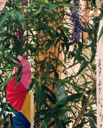 tanabata tokyo, tanabata fête des étoiles japon, vivre a tokyo, visiter tokyo, expatriation tokyo, fête japonaise