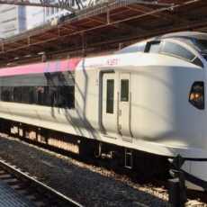 L'arrivée à Tokyo en Narita Express, vie à Tokyo