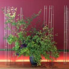 Cours d'Ikebana à Tokyo, vivre à Tokyo, visiter a tokyo