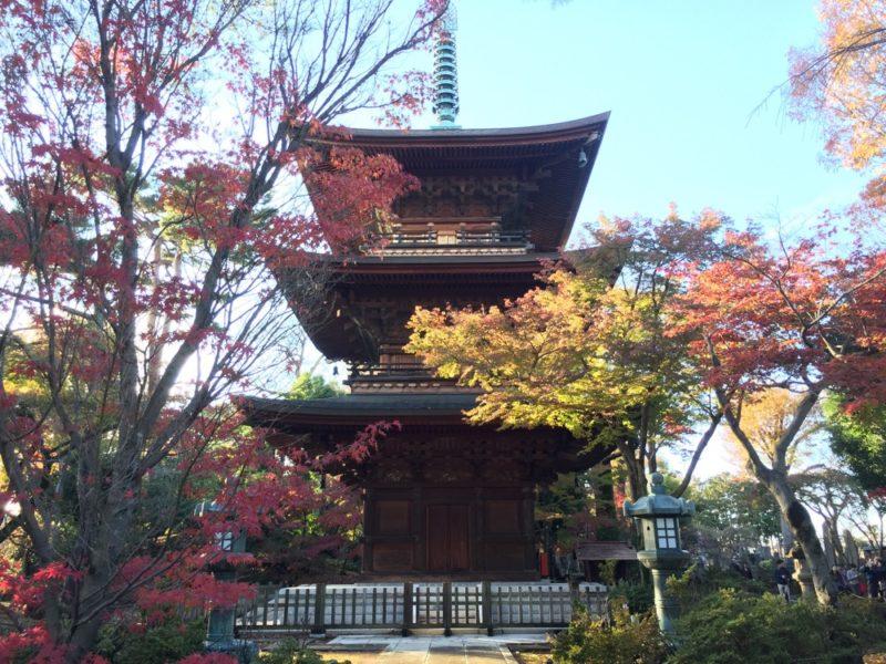 Le temple Goutokuji l'automne, Visiter Tokyo et le Japon