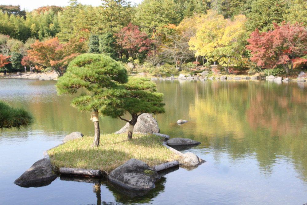 Le jardin japonais du parc Showa Kinen , Visiter Tokyo et le Japon, expatriation à tokyo
