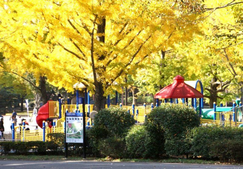 Un parc de jeu dans le parc Showa Kinen , Visiter avec Tokyo avec des enfants