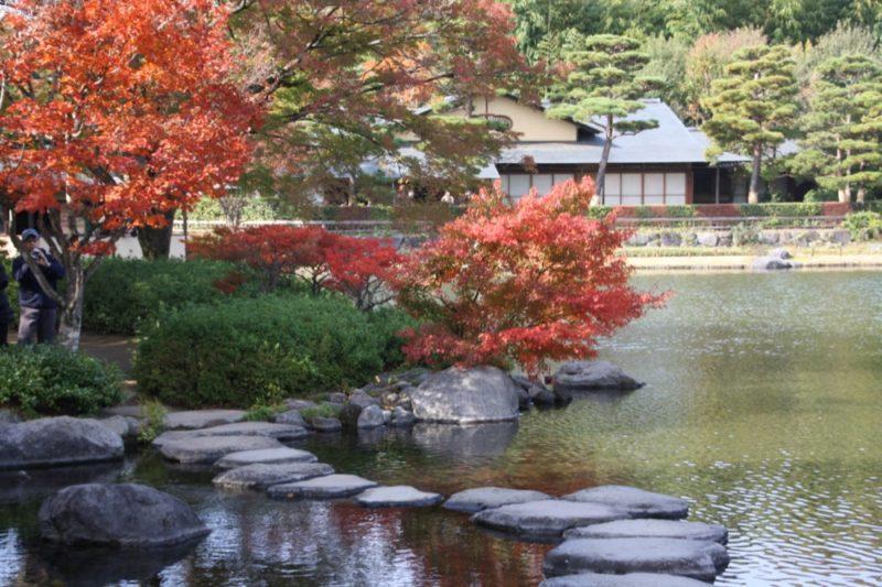Dans le jardin japonais du parc Showa, Visiter Tokyo et le Japon