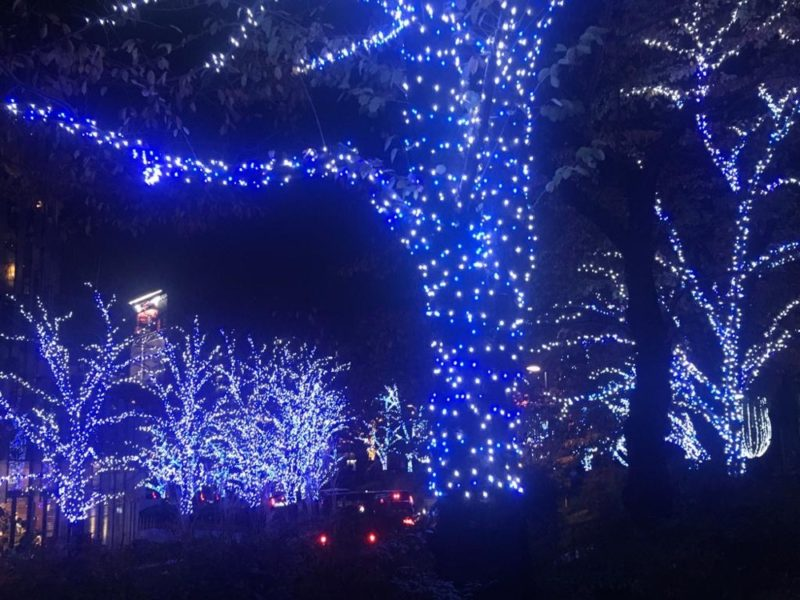 Les illuminations à Tokyo Midtown, vivre a tokyo, expatriation a tokyo
