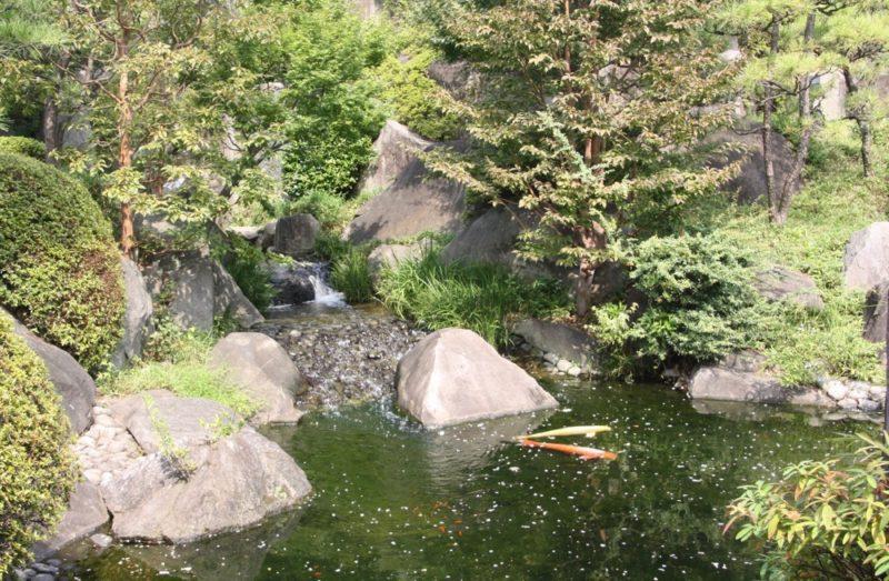 Le jardin de l'époque Edo Mejiro Teien, Vivre à Tokyo
