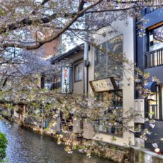 Kiyamachi dori Kyoto, restaurants Kyoto, visiter Kyoto, visiter le japon, se loger à Kyoto