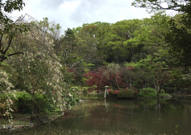 Le parc Arisugawa à Hiroo, expatriation à Tokyo, vivre à tokyo