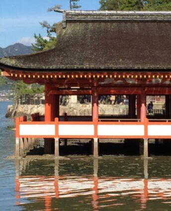 Nos bons plans pour voyager au japon, visiter le Japon, vivre a tokyo, logement au japon