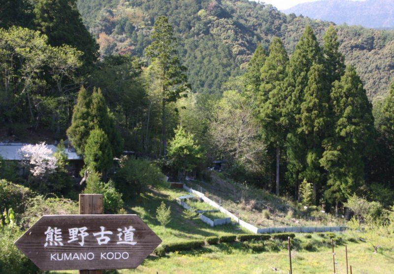 Le long du chemin de Kumano Kodo, visiter le Japon