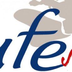 UFE japon, union des français de l'étranger japon, tokyo, japon, vivre à tokyo, expatriation tokyo, visiter tokyo