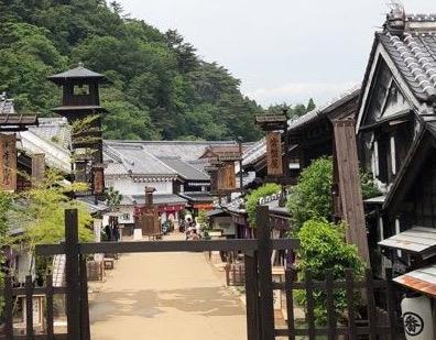 Spectacle Ninja eu parc Edo Wonderland, vivre à tokyo, visiter tokyo et le japon, expatriation à tokyo