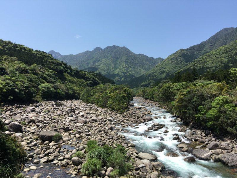 En montagne à Yakushima, visiter le Japon, expatriation à tokyo, excursion de tokyo