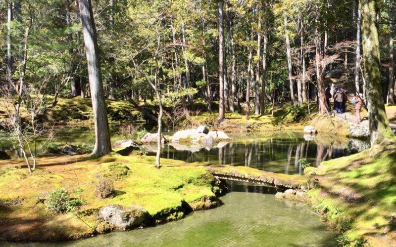 Le jardin Saihoji à Kyoto, visiter le japon, expatriation à tokyo