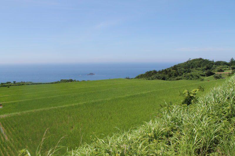 sado ga shima, île de sado, sado island, vivre a tokyo, visiter le japon, expatriation japon, découvrir le japon