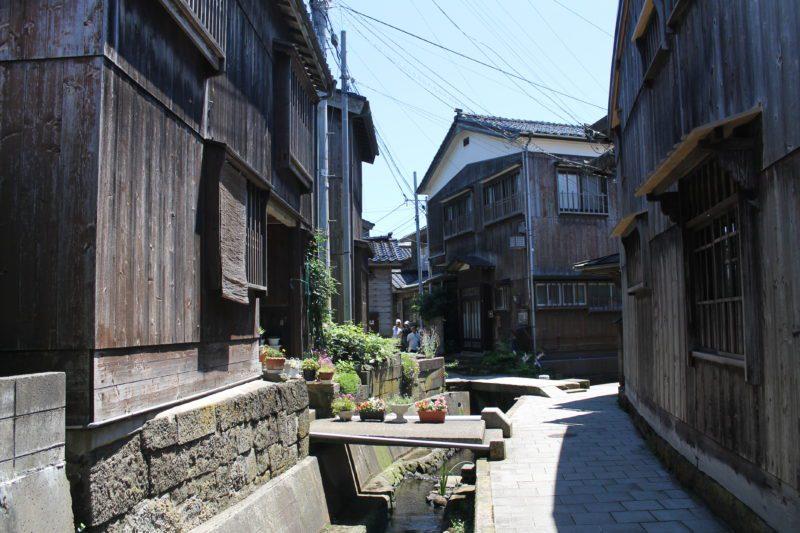 shukunegi, sado ga shima, île de sado, sado island, vivre a tokyo, visiter le japon, expatriation japon, découvrir le japon