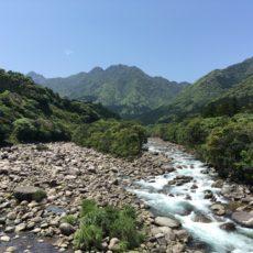 Yakushima Nature, yakushima island, weekend yakushima, visiter yakushima, vivre a tokyo
