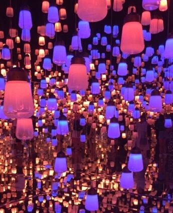 La foret de lanterne au teamLab tokyo, vivre a tokyo, francais a tokyo, visiter tokyo