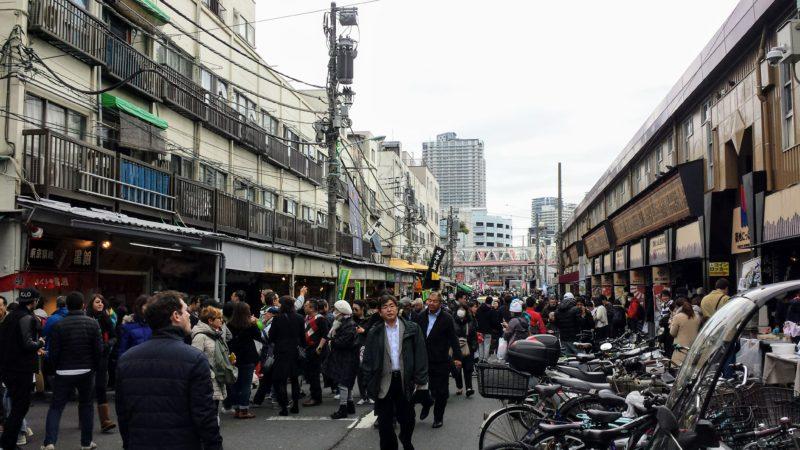 tsukiji market, tsukiji, marché aux poissons tokyo, toyosu, vivre à tokyo, visiter tokyo, français à tokyo