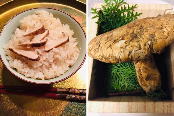 matsutake, champignons japonais, champignon japon, cuisine japonaise, recette japon, vivre a tokyo, français a tokyo, recette champignon japon