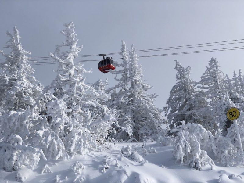 skier au japon, vivre a tokyo