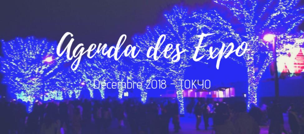 illuminations de noel tokyo, exposition tokyo, musée tokyo, vivre a tokyo, français a tokyo, expatriation tokyo, culture tokyo