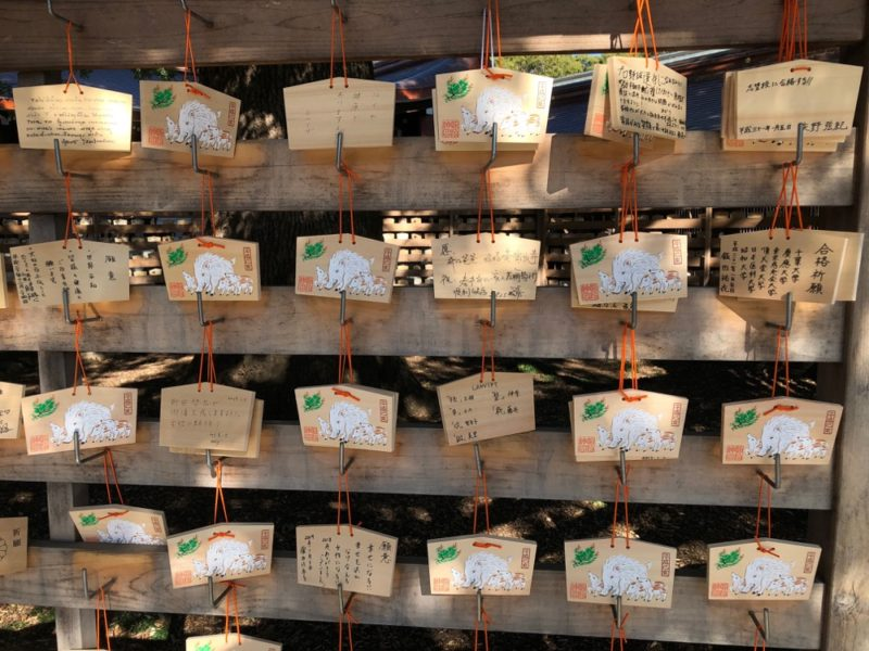 prier pour le nouvel an au meiji jingu, visiter tokyo, vivre à tokyo, français à tokyo
