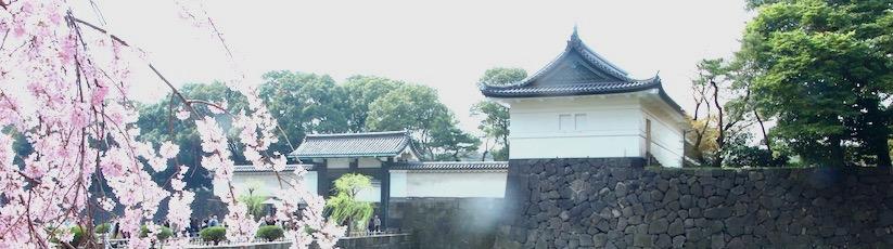 visites guidées a tokyo, vivre a tokyo, visiter tokyo, visiter le japon