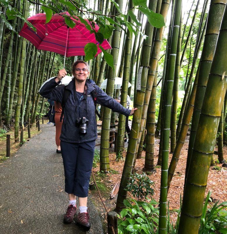visite guidee des jardins, vivre à tokyo, expatriation à tokyo, visite guidée, jardins