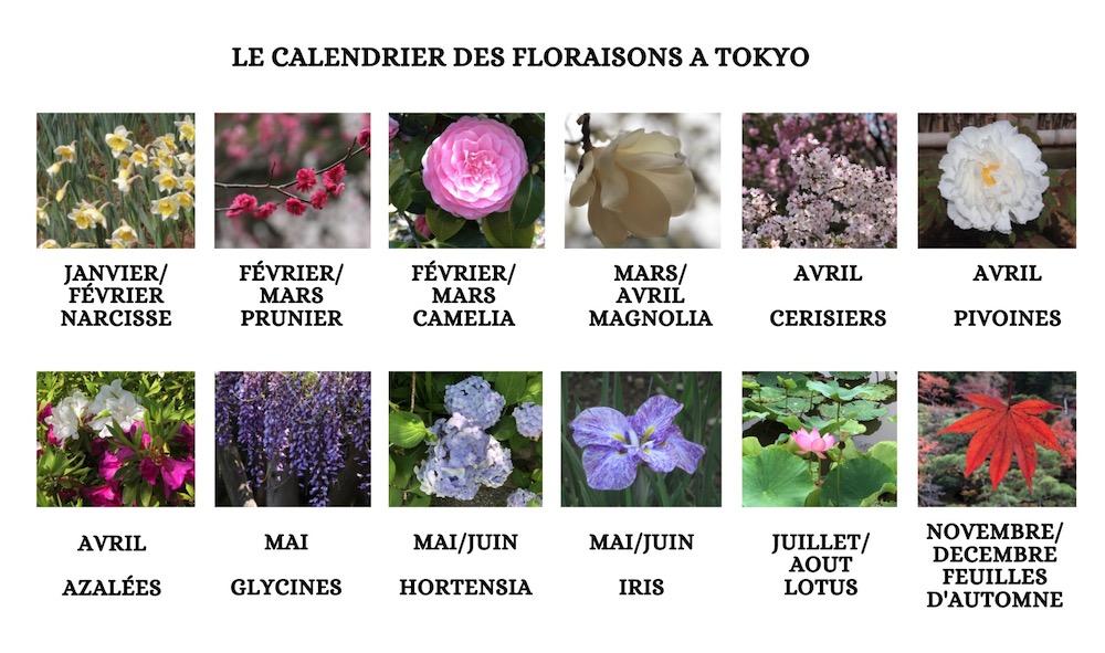 fleurs à tokyo, saison à tokyo