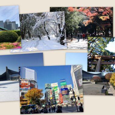 visiter tokyo au fil des saisons, vivre a tokyo, visiter tokyo, expatriation a tokyo