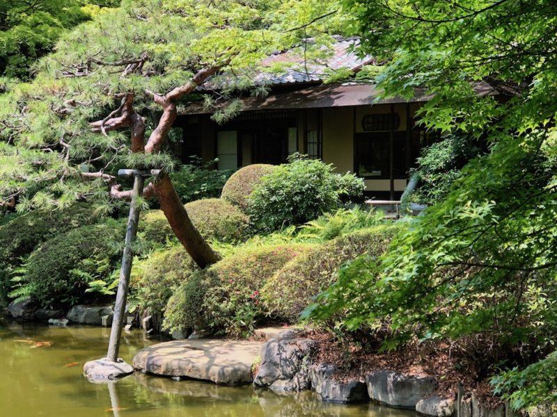 jardin japonais de musée d'art métropolitain teien à tokyo, vivre a tokyo, visiter tokyo, musee a tokyo
