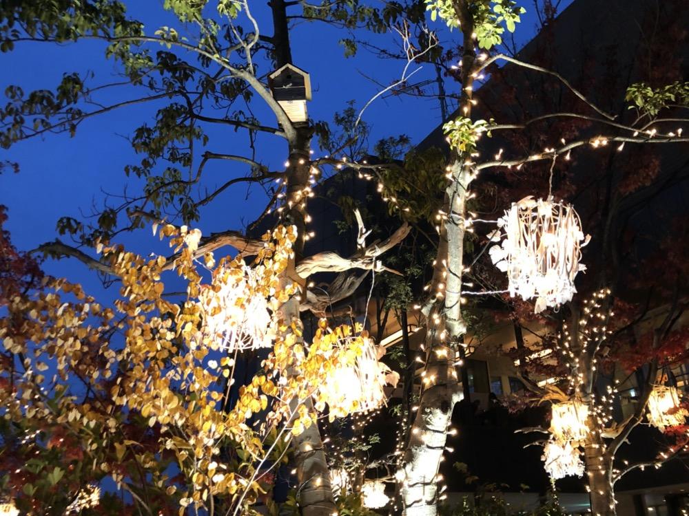 tokyo, illumination