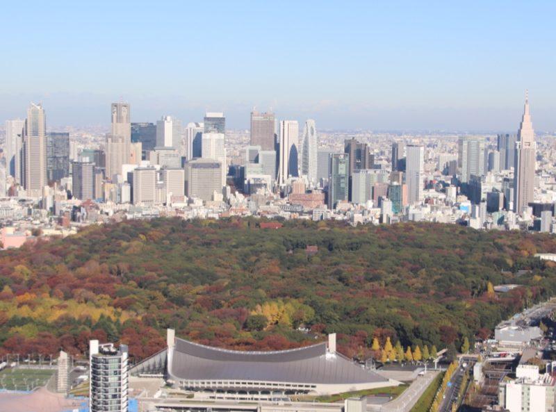 shinjuku, tokyo, shibuya sky, vivre a tokyo, visiter tokyo, jeux olympiques 2020