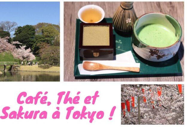mini guide, sakura a tokyo, visiter tokyo