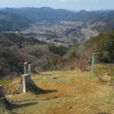 ome, excursion à la journée, vivre a tokyo, visiter tokyo