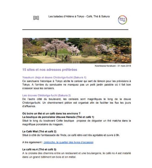 cerisiers à tokyo, vivre a tokyo, cherry blossom, visiter tokyo