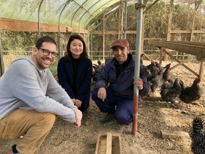 bio, ecoloupe, vivre a tokyo, courses bio