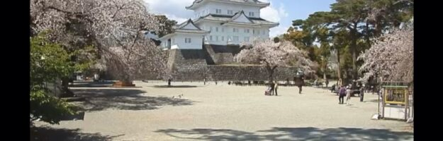 vivre à tokyo, visiter le japon