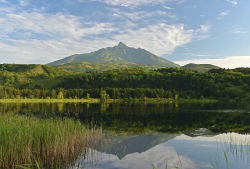 vacances à Hokkaido, vivre à tokyo, visiter le Japon