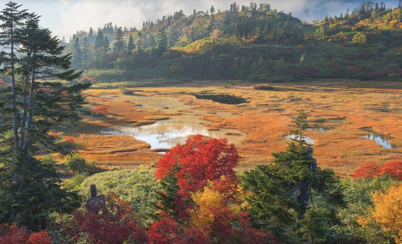 automne au Japon, myoko, visiter le japon, vivre a tokyo
